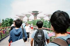 (famnighjarta) Tags: friends people plants tree gardens by bay singapore outdoor 200 fujifilm analogue supergrove