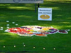 Animals (Stefan Peerboom) Tags: mosaic mosaics 2012 mozak fruitcorso mazaken