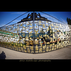 Nature Gates ... to The Black Hills (mariola aga) Tags: plants distortion nature animals southdakota photoshop buildings square parkinglot gate wideangle effect crazyhorsememorial thegalaxy naturegates goldendesign sailsevenseas mygearandme mygearandmepremium mygearandmebronze theindianmuseumofnorthamerica thenativeamericanculturalcenter