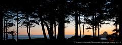 Canada summer trip 2012 DSC_3817.jpg (PowderPhotography) Tags: trees sunset panorama canada bc britishcolumbia vancouverisland tofino vista 2012 coxbay pacificsands esowista powderphotography
