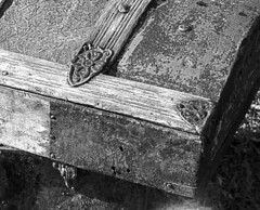 OLD TRUNK DOOR (t. m. angelo _ akron,ohio- moved to ipernity) Tags: bw texture film trunk mamiyarb67 adox