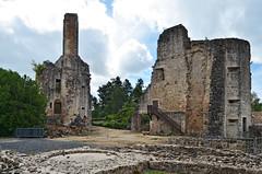 Chteau Les Cars - Haute Vienne (Vaxjo) Tags: france castle ruins chteau castillo 87 castelli limousin ruines hautevienne lescars