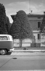 (giovanegian) Tags: light shadow summer italy tree volkswagen topiary afternoon tranquility calm silence modena absence contaxt2 fujineopanss transportert2 orwoa03 vintageworld 73020c