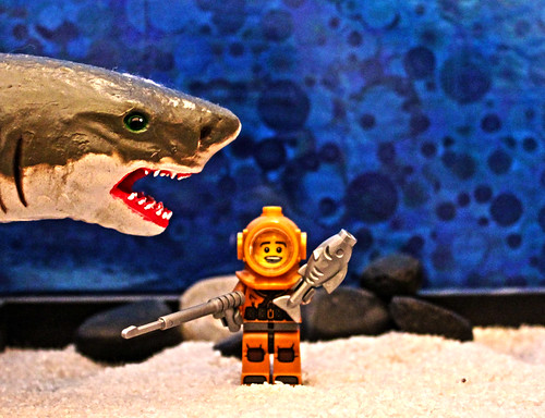Shark Week by Evil Cheese Scientist, on Flickr