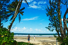 mission beach (rideritaliano) Tags: sun beach nikon oz australia queensland mission coconuts vr australie 18105 d7000