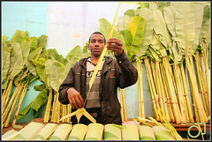 Banana leaves seller, KR market (Jogesh S) Tags: india colors market bangalore bazaar colourfull krmarket