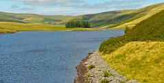 ELAN VALLEY (chris .p) Tags: elan valley nikon d610 capture view image trees water lake wales hills summer 2016 uk august