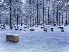IMG_0298-Editx5-Edit-2 (kseniabramley) Tags: tree trees grave graveyard cemetery gravestone gravestones woods wood woodland dead christian christianity death winter finland 2009 snow white
