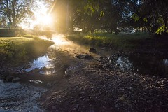 Misty and Foggy Dawn (Geoffsnaps) Tags: runningcreekparklands running creek park parklands nikond810 nikon d810 fx gitzogm5541carbonmonopod gitzo gm5541 carbon monopod acratechpanoramichead monopodhead acratech panoramic head nikonnikkor28mmf18gafs nikkor 28mm f18g f18 18g afs 18 g