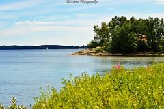 Korkeasaari 1 (Elena Delahaye) Tags: finland nature helsinki island sea north scandinavia suomi