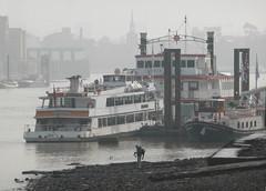 Thames Luxury Charters' boats (jane_sanders) Tags: london thamesluxurycharters tlc boat erasmus dixiequeen elizabethan riverthames river thames