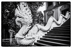 Vietnamese dragon statue (minhty0602) Tags: dragon dragonstatue legend legendanimal animal vietnam vietnamese vietnameseculture culture asianculture belief architecture sculpture engraving stairs pagoda temple worship region statue pentax pentaxk3 sigma1750 sigma sigmalens k3