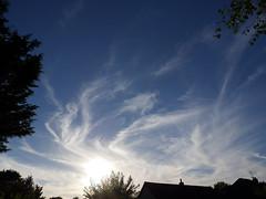 Cirrus evening skies (Nevrimski) Tags: clouds cirrus sunset sky