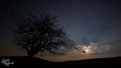 Chasing Stars... (judithrouge) Tags: moon mond night nacht sterne stars clouds wolken strahlen mondstrahlen moonrays rays landscape landschaft baum tree solitude einsamkeit