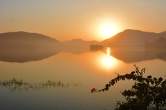 Sunrise at Water Palace lake (Marco A Rodriguez) Tags: water palace lake lago india palacio amanecer sunrise agua flor