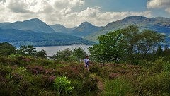 Arrochar Alps : A Chrois, Ben Vane, Ben Vorlich (brightondj - getting the most from a cheap compact) Tags: robroysview trossachs scotland hills mountains firstwalk landscape trees woods lochlomond child arrocharalps benvane benvorlich achrois explore