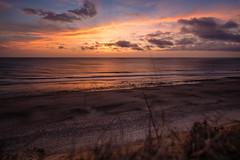 Snapshot of a Sunrise (photosbydmitriy) Tags: capecod twigs beach sunrise landscape nature dawn clouds ocean massachusetts waves nauset light tse17 eastham unitedstates us