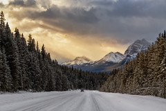 Sunrise on Icefields Parkway (Saptashaw Chakraborty) Tags: canada alberta canon 6d 24105l banff nationalpark banffnationalpark winter snow road mountain mountains sunrise golden clouds