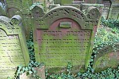 Grabstein von Michle bat Eli Lindwurm, verheiratete Gans (~1680-1747) (S. Ruehlow) Tags: grave frankfurt tombstone gravestone grab grabstein jewishcemetery frankfurtammain מצבה jüdischerfriedhof battonnstrase mazewa jüdischerfriedhofbattonnstrase