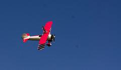 DSC03088 (joevain) Tags: zeiss plane sony contax 28 yashica 135mm nex5