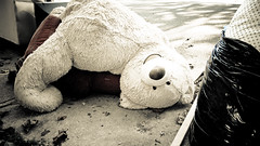 Teddy's Dead I (Surreal-Journey) Tags: ted toys teddy teddybear stuffedanimal adolescence urbanna islandofmisfittoys discardedtoys