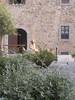 "Bolgheri - Toscana • <a style=""font-size:0.8em;"" href=""http://www.flickr.com/photos/81898045@N04/7977098190/"" target=""_blank"">View on Flickr</a>"