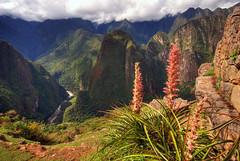 Andean landscape (Rich3012) Tags: flowers mountains peru machu picchu inca cuzco america landscape cusco south ruin andes hdr deparment