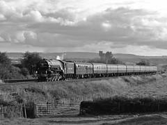60163 Tornado, Cogload Junction, Nr Taunton, 8/8/09 (steventoogood53) Tags: train bristol plymouth locomotive a1 tornado taunton britishrailways lner uksteam 60163 alltypesoftransport pathfindertours cogloadjunction