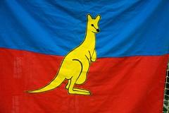 Kangeroe 40 jaar (29 van 314)
