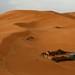Contraste de cores nas areias do Erg Chebbi
