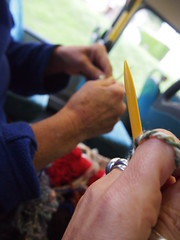 Knitting to record a days travel and research (birdlouise) Tags: travel two art film wool public buses wales project still friend knitting craft photograph journey artists ceredigion tregaron