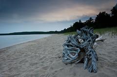 Beached (Mr Macgoo) Tags: beach sand nikon driftwood lakesuperior d7000