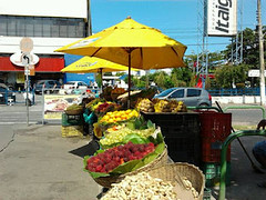na cidade... (Silvianasci) Tags: brazil frutas fruits brasil blog bahia salvador bairro itaigara salvadoremumdia