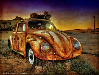 VW - bug in the outback!