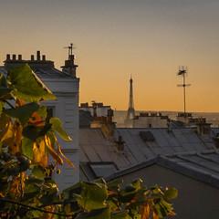 La Tour (geofana) Tags: leica sunset paris france tower toureifel dlux5