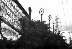 Kodak Medalist 1 Shanghai GP3 100 dev caffenol (Rendrag1313) Tags: blackandwhite bw 120 film analog wheels 6x9 mf poles unusual caffenol mediumformay kodakmedalist