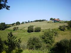 Kuhweide (Deve) Tags: spain sommer urlaub spanien campingplatz baskenland atlantik