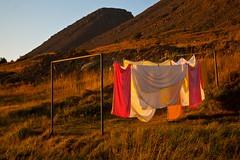 Evening light (estenvik) Tags: autumn fall island iceland september laundry clotheslines 2012 hst klestrk patreksfjrdur klesvask patreksfjord estenvik erikstenvik patreksfjoerdur kletrk