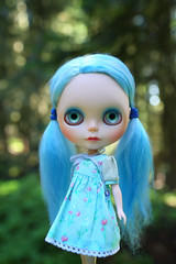 Blue Fairy in the Forest