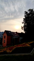 (txchris86) Tags: abend sonnenuntergang natur nature sunset eyeem cloudy wolkig pflanzen plants sommer summer edited evening hausdach hausdcher rooftop rooftops bume trees gebude buildings flowers blumen