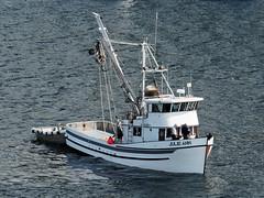 Julie Ann (Whidbey LVR) Tags: lyle rains lylerains olympus em5ii alaska cruise boat ketchikan