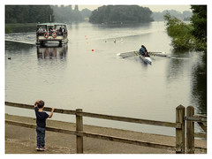 114/116 Watches (Jamarem) Tags: trentham gardens staffordshire catamaran rowing boat oars boy watching dull rainy 116picturesin2016 canonpowershotsx50hs