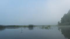 Cerknica Lake (happy.apple) Tags: otok cerknica slovenia si cerknikojezero cerknicalake slovenija landscape morning fog summer poletje megla jutro