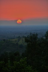 Sunset over the jungle (Marco A Rodriguez) Tags: ecuador sunset arenillas hillary jungle rainforest el oro sol puesta atardecer selva jungla night orange paisaje landscape tree arbol machala santa rosa ocaso tarde afternoon evening cielo