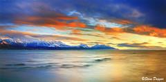 0S1A1349enthuse-Pano (Steve Daggar) Tags: kaikoura newzealand sunrise travel seascape seal