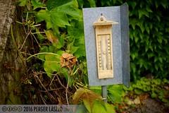 PLW_5531 (Laszlo Perger) Tags: wien vienna sterreich austria blumengarten hirschstetten flowergarden