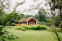 Framed (freyavev) Tags: house redhouse green framed branches swedishhouse sweden gothenburg gteborg schweden sverige 50mm vsco outdoor lakedelsjn niftyfifty mikasniftyfifty
