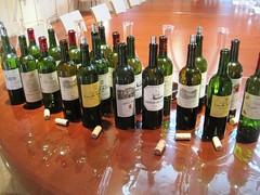 Blind tasting of 2005 & 2009 St Julien