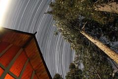Star Trails Over Lake Arrowhead (sfxeric) Tags: blue moon tree night stars star trails bluemoon startrails aframe