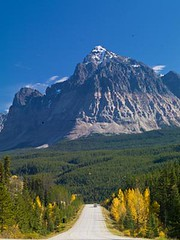 Canada 8-25 (frankwicker) Tags: trees vacation snow canada mountains water beautiful nationalpark jasper hiking lakes worldheritagesite adventure alberta destination banff majestic province autumncolor canadianrockies snowcappedmountains outdooractivity